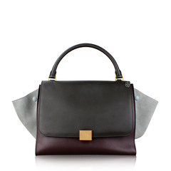 Celine Trapeze Multicolor Bag