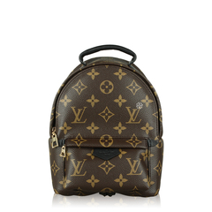Louis Vuitton Backpack Palm Spring